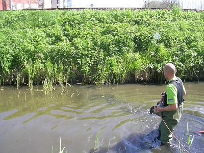 duiker inspectie